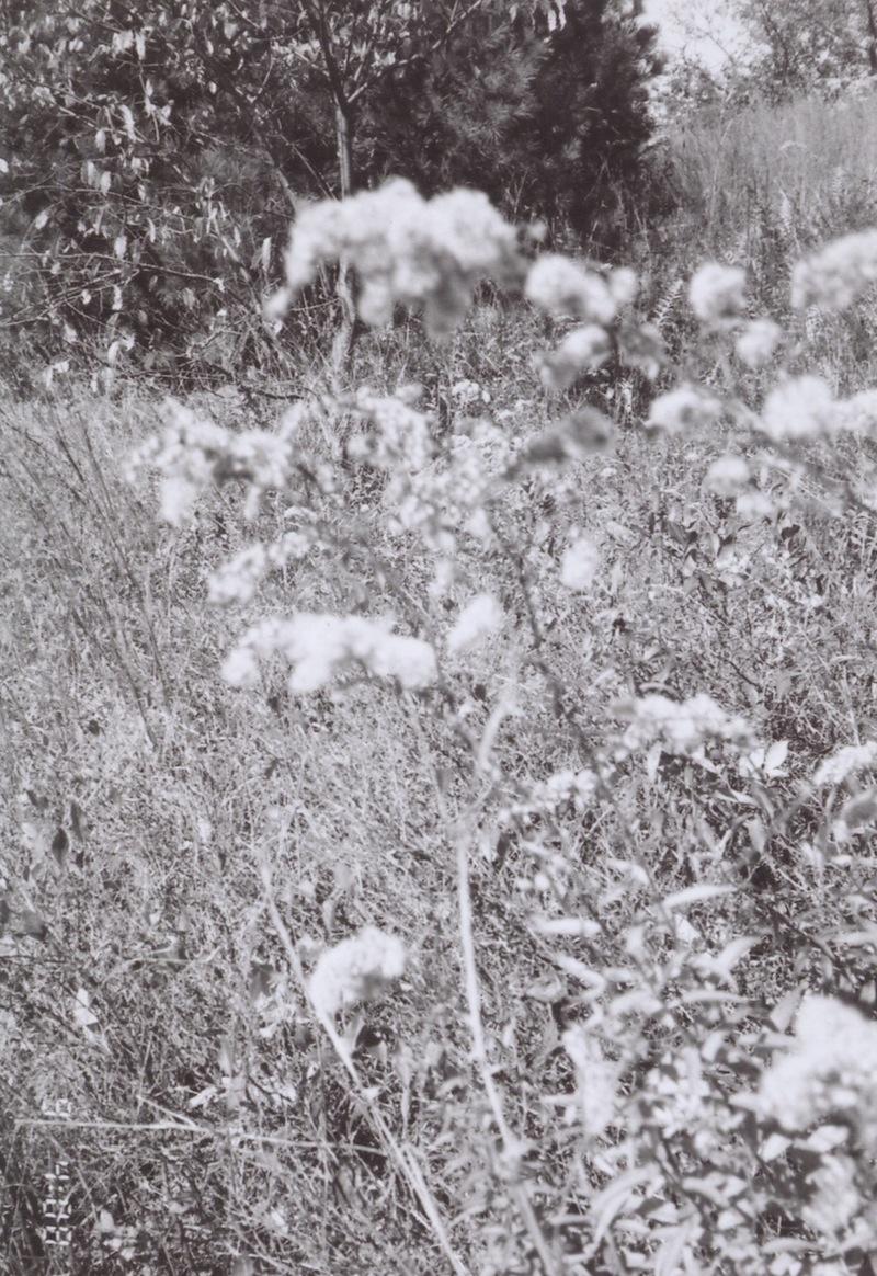 winter14film 17